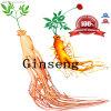 Ginsenoside d'or Rg Panax extrait de baies de ginseng pour rétablir le rein