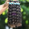 Haar-Extension, brasilianische Haar-Webart, Jungfrau-Menschenhaar (VB05044DW)