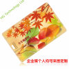 The Card Can Be Customized USB Flash Stick (HGW-104)