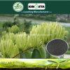 Il carbonio di alta qualità di Kingeta ha basato il fertilizzante composto NPK 15-5-10