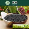 Il carbonio di Kingeta ha basato il fertilizzante composto NPK 28-6-6 per frutta