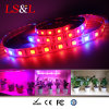 Red+Blue Waterproof LED Seedling Grow Light
