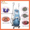 La cavitation Cryolipolysis Slimming Machine 3 Cryo poignées beauté multifonction 5 en 1 de l'équipement