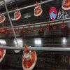Fabrik-Zubehör-niedriger Preis-Bratrost-Geflügelfarm-Gerät/Huhn-führende Zeile Gerät