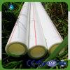 Tubo de ppp de alta calidad para el suministro de agua caliente