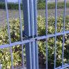 中国からの高品質及び低価格の二重ワイヤーによって溶接される塀