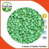 Cor verde do estado NPK 20-15-6 granulado composto do fertilizante