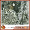 Импортированная зеленая плитка камня гранита Marinac