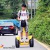 Горячий Chariot Китая батареи лития надувательства 72V электрический