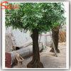 Árvore viva artificial plástica do Ficus da fibra de vidro decorativa verde