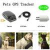 Inseguitore portatile di GPS dell'animale domestico impermeabile con grande capienza EV-200 della batteria