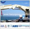 Grue extraterritoriale de navire-grue de porte-fusée de Floading de levage hydraulique de boum