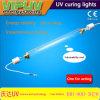UV Ultraviolette Lamp 1 KW van de UVLijm Shadowless die Licht genezen
