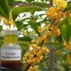 Nº CAS 68917-05-5 Osmanthus natural Aceite esencial de la planta de hormigón