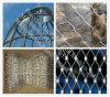 ステンレス鋼の飼鳥園の網(R-SSW)