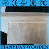 1220 * 2440mm de abedul / Roble Madera contrachapada comercial, madera contrachapada comercial 3.6mm