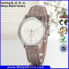Reloj ocasional de las señoras del cuarzo de la manera del ODM de la fábrica (Wy-082B)