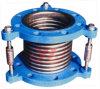 Amortisseur de vibrations de la pompe à eau