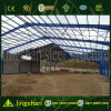 Venta caliente Estructura de acero de construcción con precio al por mayor