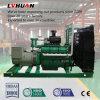 Зеленый индикатор питания 40квт небольших биогазовых генератора