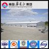 La estructura de acero certificada ISO almacena (SS-313)