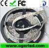Qualität imprägniern der 5050 LED-Streifen-Leuchte