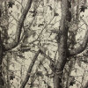 100% de poliéster impresso Camouflage Short-Pile Velboa com TPU