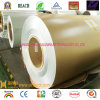 Color Coated Aluminum Coil en Alloy 1100 3003-PE-Golden