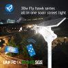 2017 Nouveau 30W Rue lumière solaire avec capteur micro ondes