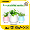 Flower-Pots secs sans fil de musique du vase à fleur d'usine de haut-parleurs de Bluetooth K3