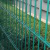 高品質及び低価格の三角形によって溶接される塀中国製
