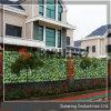 인공적인 산울타리 정원 프라이버시 녹색 담