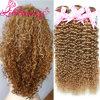 Heißes verkaufenlili-Schönheits-verworrenes lockiges brasilianisches Jungfrau-Haar