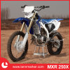 250cc Gas Dirt Bike