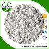 Inorqanicの硝酸塩肥料のアンモニウムの硫酸塩肥料