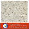 Encimera blanca de Regina del azulejo del granito del suelo (DES-GT023)