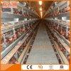 Gaiola automática de frango para camadas ou frangos de corte
