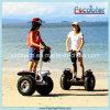 Ninebot elektrischer persönlicher Transport-Roboter Ninebot zwei Rad-Selbstschwerpunktunicycle-elektrischer Roller