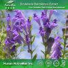 Выдержка Scutellaria 100% естественная (95% Baicalin)
