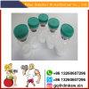 Follistatin 344 El crecimiento muscular culturismo F 344 Polvo blanco