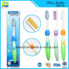 Lady for Adult Toothbrush