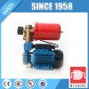 Gp125自動電気表面の自動プライミング水ポンプ(0.5HP)