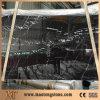 中国のホーム装飾の黒のNero Marquineの磨かれた大理石のタイル