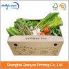 형식 디자인 물결 모양 음식 상자 식물성 포장 상자 (AZ122822)