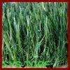 Synthetisch Kunstmatig Gras voor Tuin het Verfraaide Groen Zetten