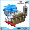Pompe à plongeur à haute pression commerciale de l'eau des produits 20000psi d'assurance de qualité (FJ0052)