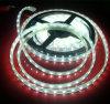 2year 보장 3528SMD 유연한 LED 지구 빛