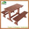 Mesa de piquenique WPC para jardim ou parque ao ar livre