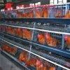 Cage de couche de poulet de batterie de qualité de matériel de volaille la meilleure pour la ferme du Pakistan