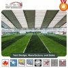 45 Meter-freie Überspannungs-Zelt-Zelle für Fußballplatz